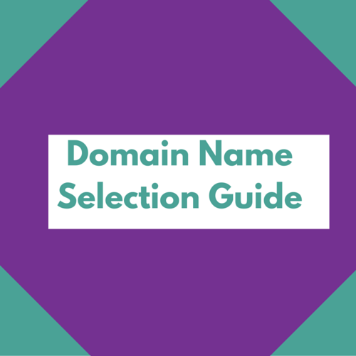 Domain Name Selection Guide