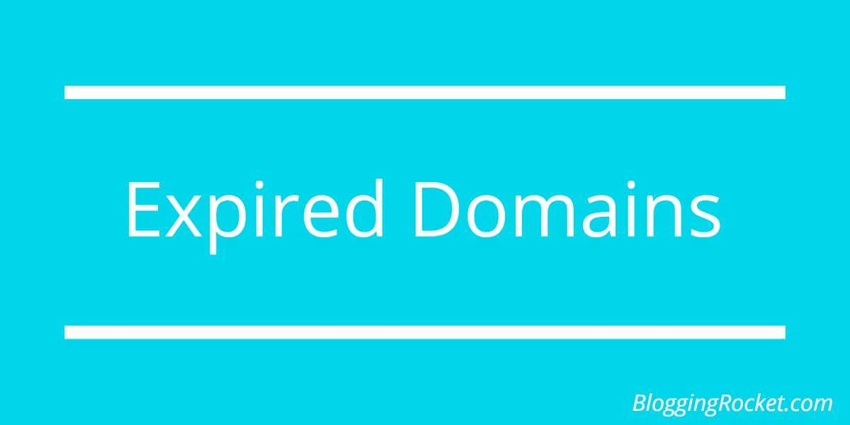 6 Essential Things to Check in an Expired Domain : Infographic