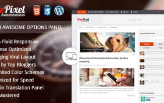 TruePixel Theme Review : Best WordPress Theme For Adsense