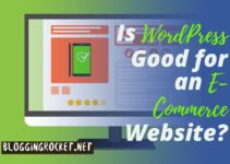 Is WordPress a right choice for an e-commerce website